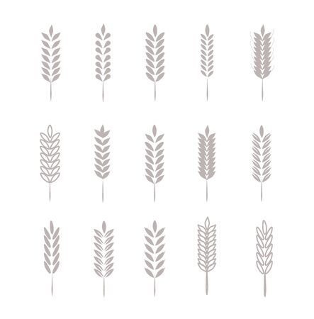 Wheat Ears Icons   For Identity Style of Natural Product Company and Farm Company. Organic wheat, bread agriculture and natural eat.