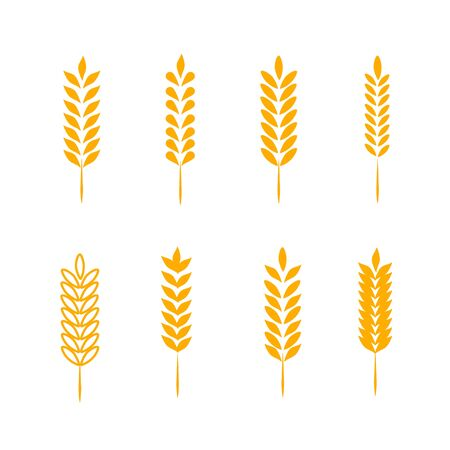 Wheat Ears Icons  Set. For Identity Style of Natural Product Company and Farm Company. Organic wheat, bread agriculture and natural eat. Reklamní fotografie
