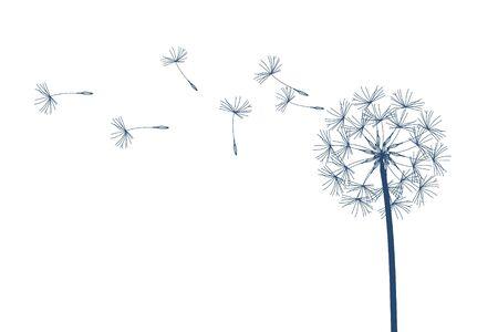 Dandelion raster. Make a Wish. Simple minimalist style. Stock Photo
