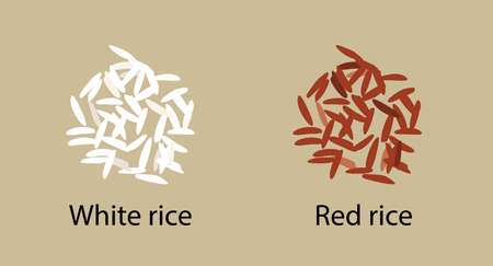 Two handfuls of white parboiled and red cargo rice, isolated on a brown background,vector. Healthy diet, vegetarian food, design element Иллюстрация