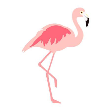 raster illustration pink flamingo. Exotic bird. Cool flamingo decorative flat design element. Lovely flamingo