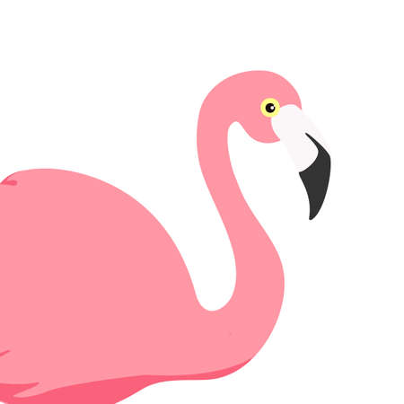 Vector illustration pink flamingo. Exotic bird. Cool flamingo decorative flat design element. Lovely flamingo Ilustracja