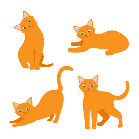 Cartoon cat set with different poses and emotions. Cat behavior and body language. Ginger kitty in simple style, isolated vector illustration. Illustration