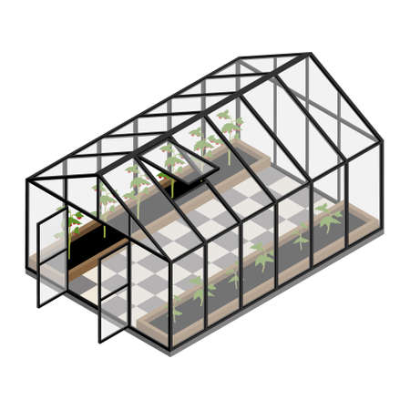 Greenhouse at an organic farm. Growing tomatoes isometric view. Glass house. Illustration