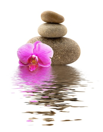 stones and orchid with reflection in water