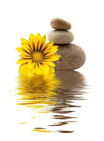 spa stones with yellow flower and a reflection in water Stock Photo