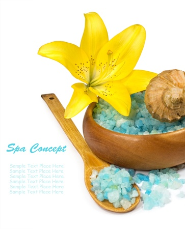 spa concept with sea salt and a lily on a white background photo
