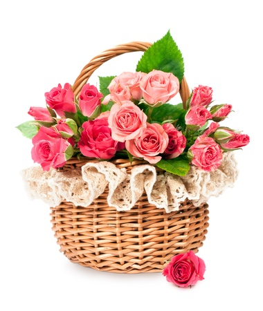 roses in a wicker basket isolated on white photo