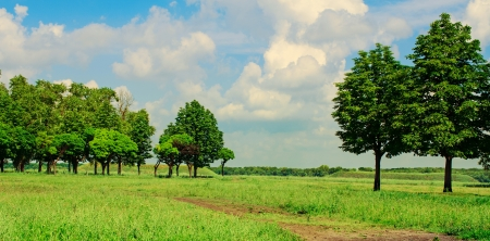 sun s: landscape .blue sky and green field