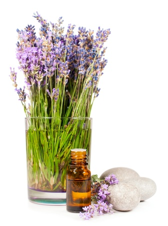 lavender flowers and essential oil isolated on white photo