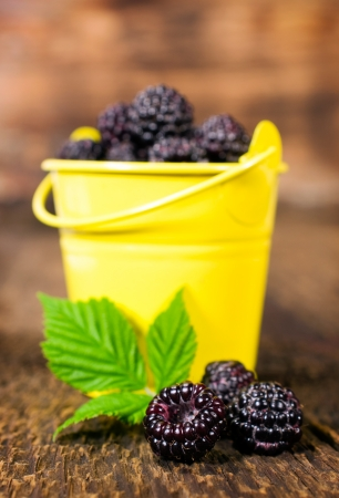 blackberries in a small bucket on a wooden background photo