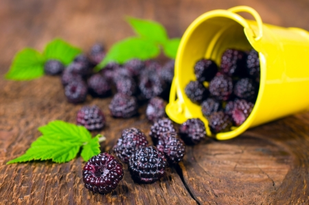 blackberries in a small bucket on a wooden background Stock Photo
