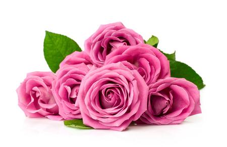 Strauß rosa Rosen auf weißem