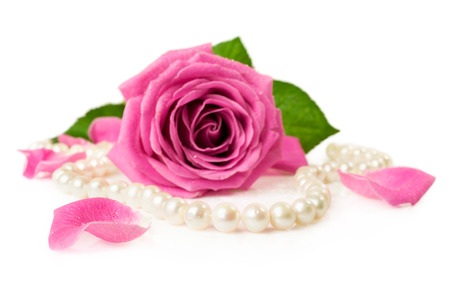 pink rose and pearl necklace isolated on white Stock Photo