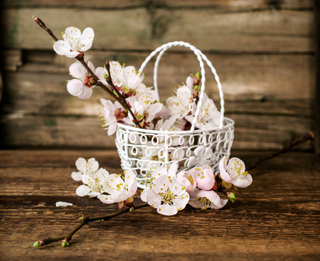 apricot blossoms in a metal basket on a wooden background
