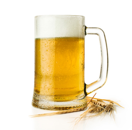 beer mug with ears isolated on white photo
