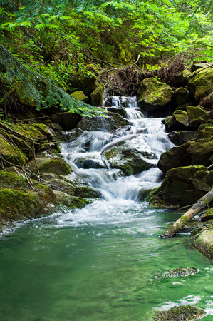 Beautiful landscape with a waterfall in the forest 스톡 콘텐츠