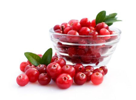 cranberries: Fresh cranberries isolated over white