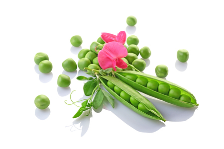 Healthy food. Fresh green peas with pink flowers of sweet pea isolated on white background Imagens