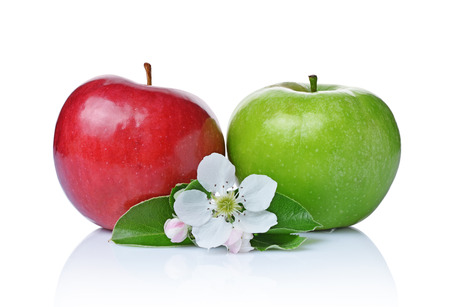 Perfect fresh ripe green and red apples with leaves and spring flowers isolated on white background