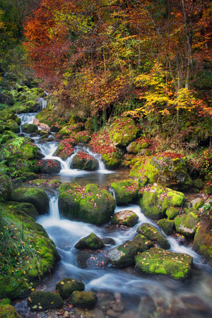 Colorful picturesque autumn landscape of beautiful river with small waterfalls on green mossy stones and fallen leaves
