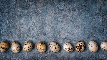 Top view on wide banner with small quail eggs on blue concrete background with copy space Stock Photo