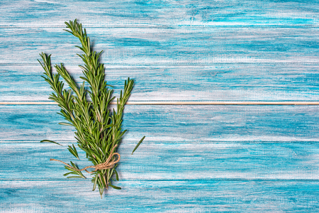 Fresh rosemary spice on blue wooden background with copy space