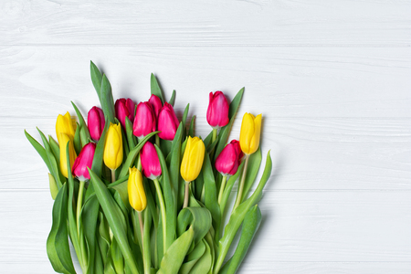 Beautiful bouquet of fresh yellow and pink tulips on white wooden background with copy space Stock Photo