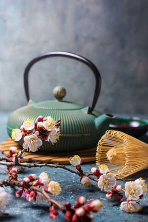 Beautiful spring composition with traditional turquoise asian cast iron kettle, bamboo whisk or chasen and flowering branches of apricot tree on blue concrete background 版權商用圖片