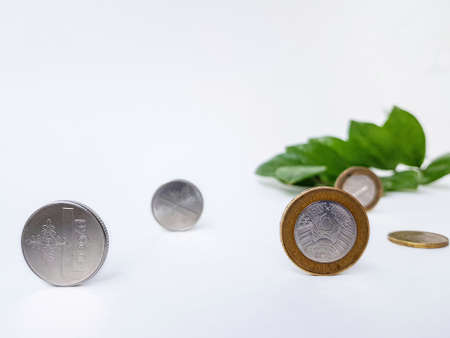 Belarusian coins made of metal alloy with copper on a white background with green leaves in the background. On the coin with yellow borders it is written in the Belarusian language Belarus, ruble. High quality photo