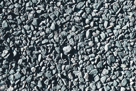 The background is made of gray stones. High quality photo Фото со стока