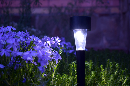 A solar-powered lamp illuminates flowers in the garden at night.
