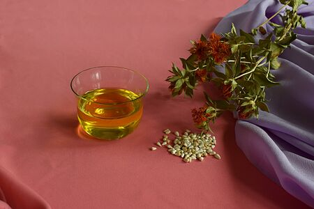 Safflower. Safflower oil, seeds and stems with flowers on a pink background. Stock Photo