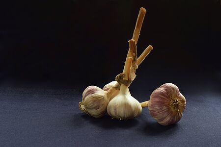 A bunch of garlic and a separate onion of garlic on a dark background close-up. 版權商用圖片