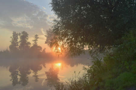Morning landscape: river, rising steam, reflection of the surrounding trees in the water. Banco de Imagens