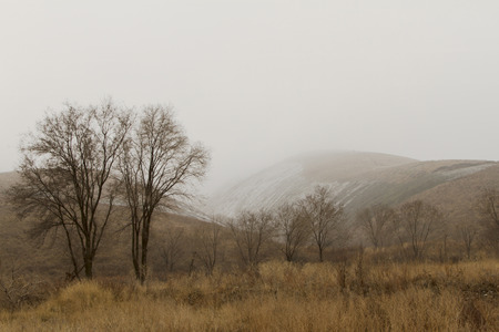 horsetooth rock: Snow in the foothills of the Trans-Ili Alatau in early spring