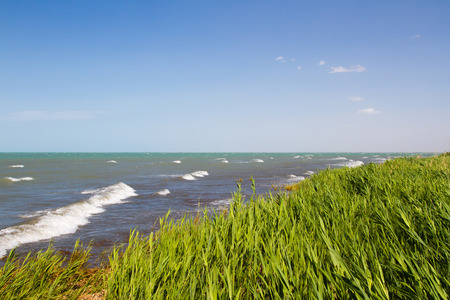 german north sea region: beach with reeds on Lake Balkhash in the middle of summer Stock Photo