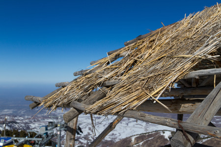 thatched: wooden shelter Thatched Cottage in the mountains of Trans-Ili Alatau