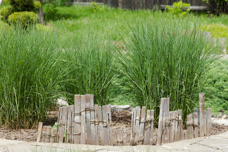 flowerbeds: Bamboo fence for flowerbeds amid tall grass