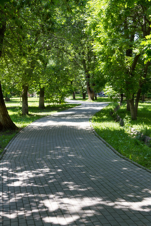 walk in: Walk in the park lined with paving slabs Stock Photo