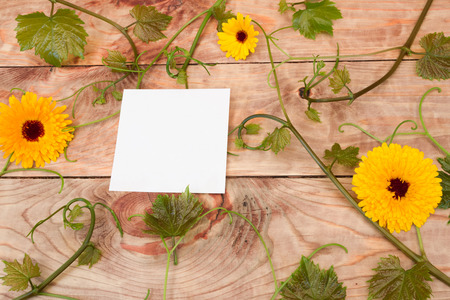 Yellow flowers vines and a sticker on the wooden table stock photo stock photo yellow flowers vines and a sticker on the wooden table mightylinksfo