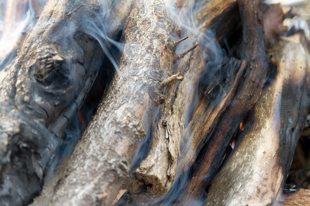 ignite: ignite a fire of twigs for cooking