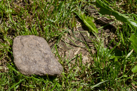 stone among green grass on trimmed lawn