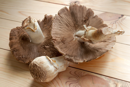 mushrooms of different sizes lying on a wooden tabletop