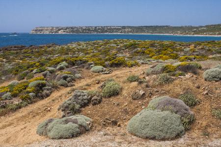 Mediterranean island landscape with sea; Bozcaada, Turkey Reklamní fotografie