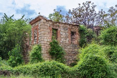 overtaken: Old abandon house, overtaken by nature Stock Photo