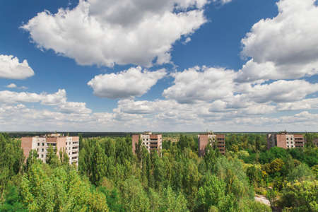 Ghost town Pripyat overgrown by wild self-seeding forest