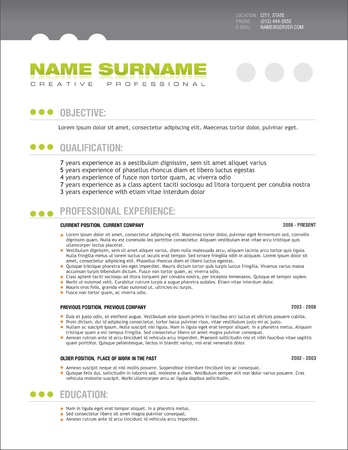 A template of professionally designed resume Banco de Imagens - 10436891