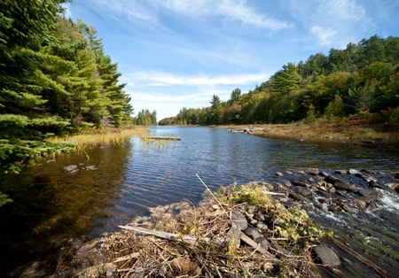 Carpenter Lake clear water vista photo