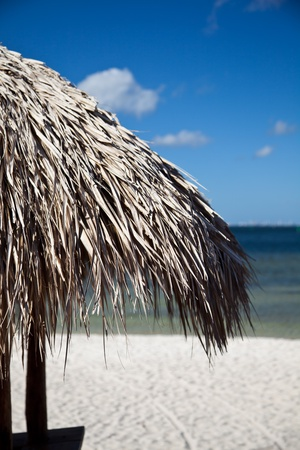 Relaxing Beach Palm House Roof Stock Photo - 11839549